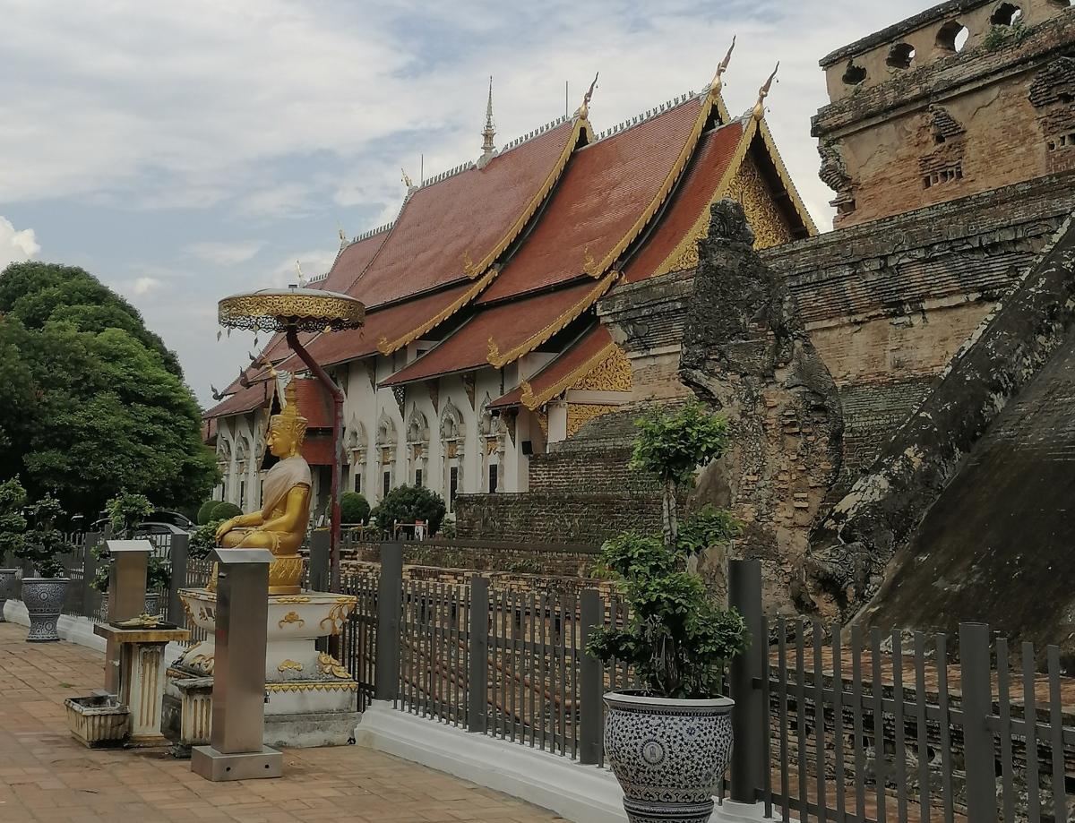 Chiang Mai, la rose duNord